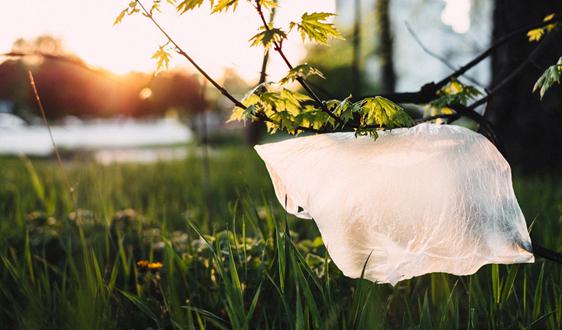 澳门塑料袋法案将于今年正式生效!
