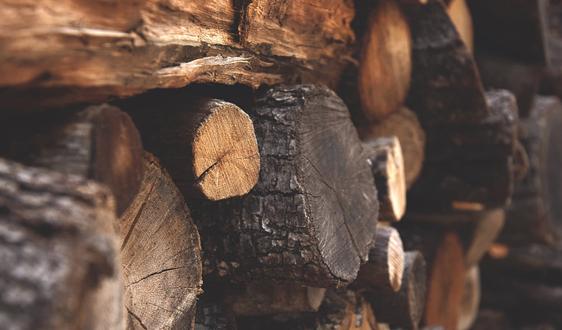 中国成越南木材较大出口国 占比达22.91%