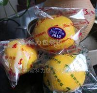 重庆全自动柠檬包装机